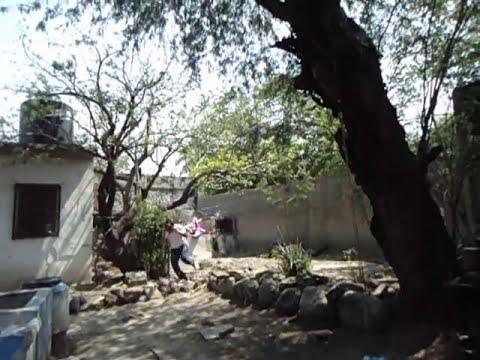 Piñata explosiva AR-15 y HULK Petardos explosivos Cohetes Mexicanos MExican fireworks