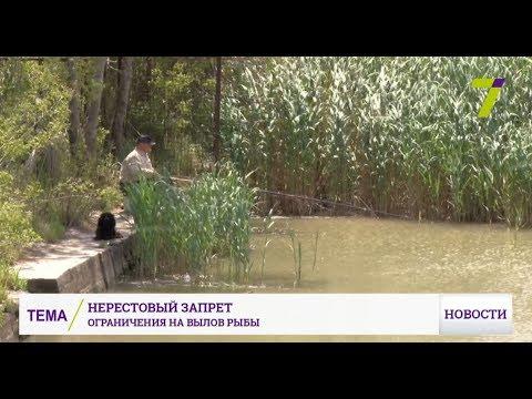 Нерестовый запрет 2018 по всем регионам России