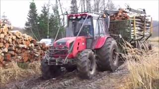 MTZ in forest