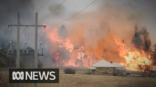 'Unprecedented at this time of year'  –  Homes in jeopardy as fires burn NSW, Gold Coast | ABC News