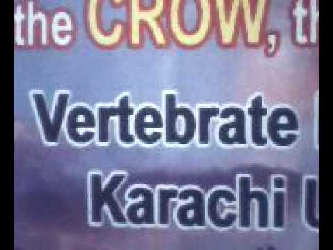 Vertebrate Pest Control Institute (Karachi University Campus) Part-1.avi