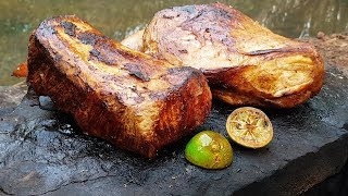 Primitive Times: Cooking Meat On a Rock