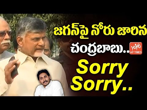 Chandrababu Shocking Comments On YS Jagan | AP Elections 2019 | AP News | AP Special Status | YOYOAP