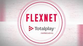 Flexnet. Facilita la implementación, operación y administración de las redes WAN