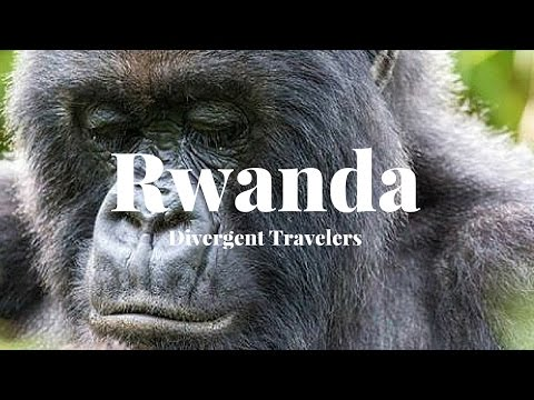 Travel Guide To Explore Rwanda  With The Divergent Travelers
