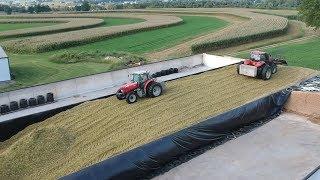 Corn Silage Harvest Begins | Filling the Big Bunk