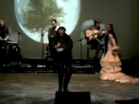 Baile-Flamenco 2012 CANTE Y BAILE FLAMENCO: Juan Román Amador.