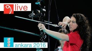 Чемпионат Мира, Анкара : Норильский никель