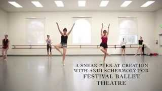 Timelapse by Andrea Schermoly - Festival Ballet Theatre Preview
