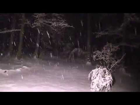 Heavy Snow Storm North Carolina February 26, 2015