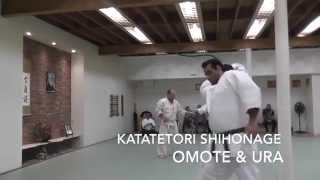 Kenosha Aikikai: 5th Kyu Test - Mike and Nick