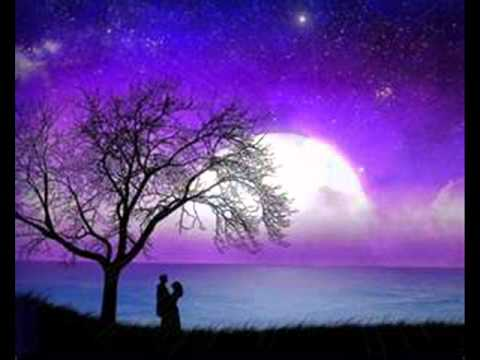 chaleco que bonito aquella noche  cancion que fue cantada por las grecas