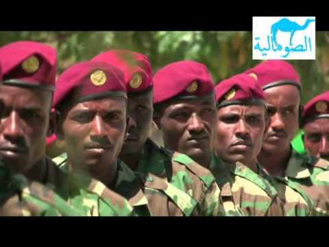 HEESTA SOMALIYA WAA MASHRUUC