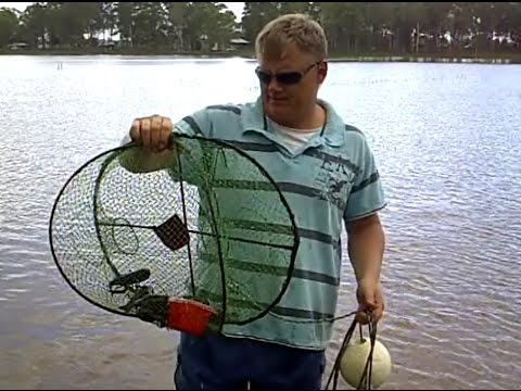 How to catch Redclaw Crayfish 2 Landbased