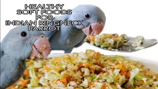 HEALTHY SOFT FOOD FOR INDIAN RINGNECK PARROTS | SOFT FOODS FOR INDIAN RINGNECK PARROT