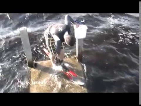 Miami University Water Ski Team Video Video