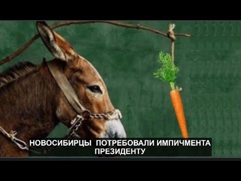 Импичмент президенту потребовали в Новосибирске №669