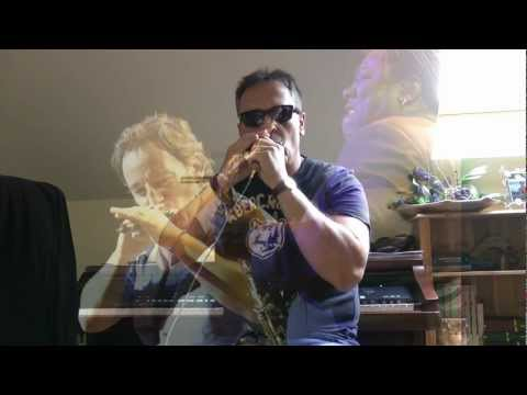 The River - Bruce Springsteen Live@NY(Full harmonica cover) .wmv