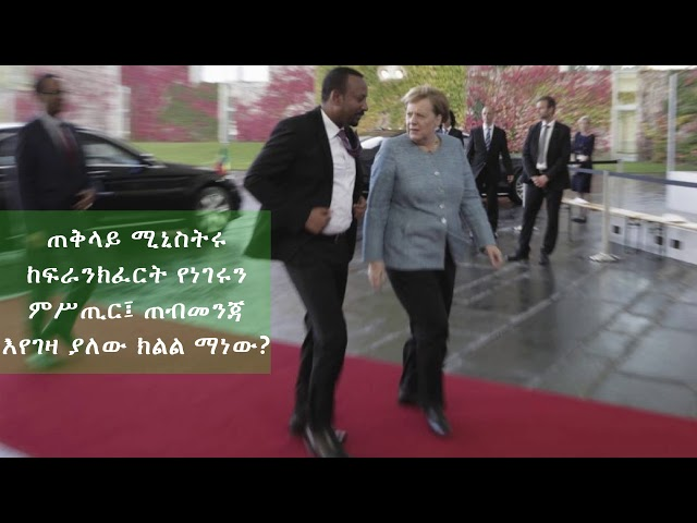 Behaylu Mideksa About PM Abiy Speech At Frankfurt