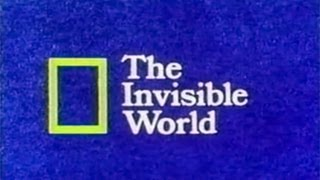 National Geographic- The Invisible World