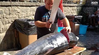 Fish Cutting in Sicily Tuna and Swordfish