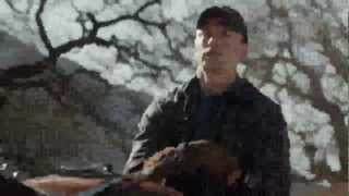 2013 Budweiser Super Bowl Ad The Clydesdales Brotherhood.mp4