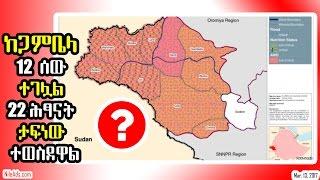 Ethiopia: ከጋምቤላ 12 ሰው ተገሏል 22 ሕፃናት ታፍነው ተወስደዋል - Gambela, Ethiopia - VOA