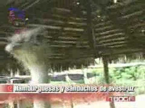Hamburguesas y sánduches de avestruz