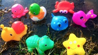 Sea Animals Names For Kids Learn Ocean Water Creatures Red Crab Turtle Toys Videos For Children