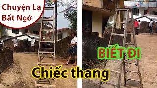 KINH NGẠC: Chiếc thang BIẾT ĐI ở Ấn Độ - Chuyện lạ thế giới