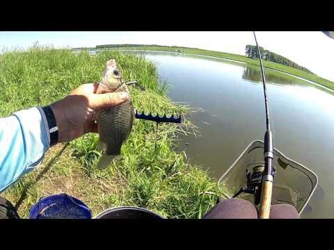 рыбалка на течении фидерными снастями видео