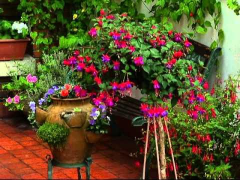I concurso de jardines en terrazas y balcones de gijon youtube - Decoracion de balcones con plantas ...