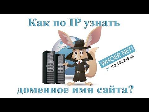Как узнать доменное имя сайта по IP-адресу