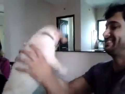 Uday Kiran - Fun With His Puppy