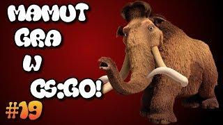 MANIEK GRA W CS:GO! - TROLL #19