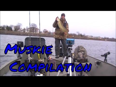 Muskie Fishing Compilation, Saint John River, Fredericton, NB