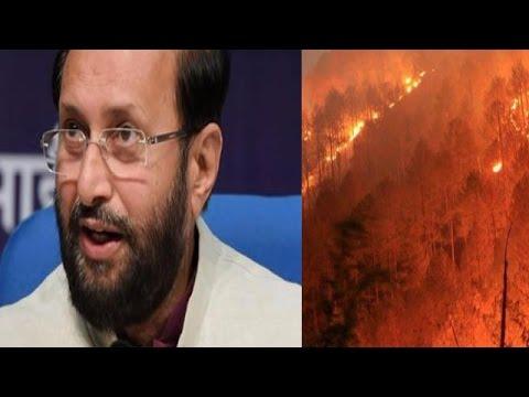 Taking Uttarakhand Forest Fires very Seriously Says Environment Minister Prakash Javadekar