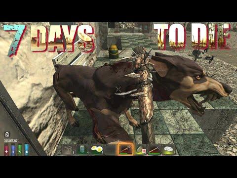 7 Days To Die - City Trippin' (E30)