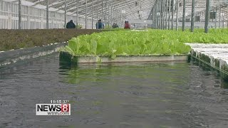 Guilford farm ditches dirt for H20 in future of farming