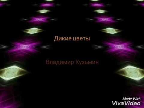 Владимир Кузьмин - Дикие цветы