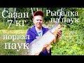Рыбалка на подъЁмник 2018 . Рыбалка на паук летом с моста. Сазан на 7 кг. Рыба моей мечты.