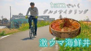 ミニベロで行くグルメサイクリング 激ウマ海鮮丼! tern verge n8