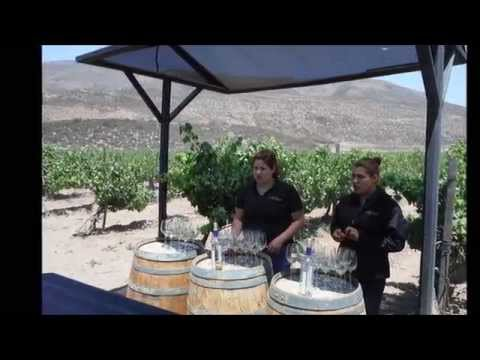 Documental Ensenada
