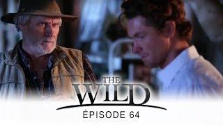 The Wild - épisode 64 - Complet en français - HD 1080