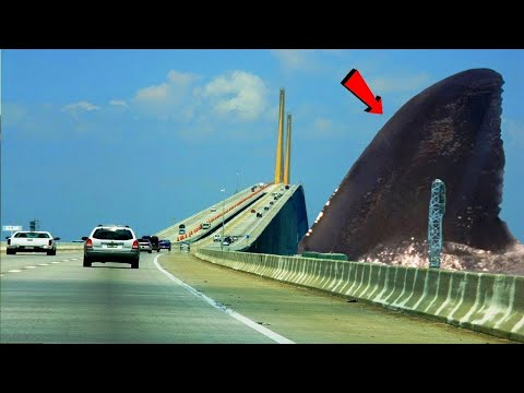 Download Lagu समुद्र के 5 सबसे बड़े और खतरनाक जानवर 5 Most Terrifying Extinct Creatures Ever MP3 Free