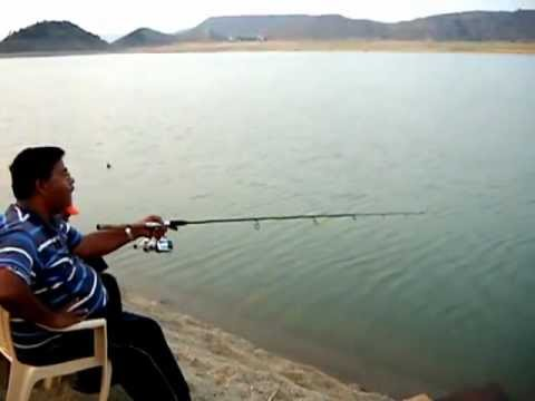 Tilapia Fishing   Nagarjuna Sagar, India   Part 2