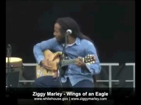 Ziggy Marley - Wings of an Eagle (Live White House Easter Egg Roll)