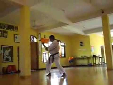 Naihanchi Nidan - Shorin Ryu KYUDOKAN Karate-do Image 1