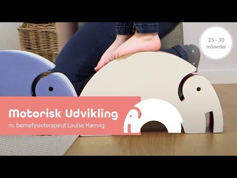 Den glade udvikling 25-40 mdr. med børnefysioterapeut Louise Hærvig og Elefant - bObles Elephant.