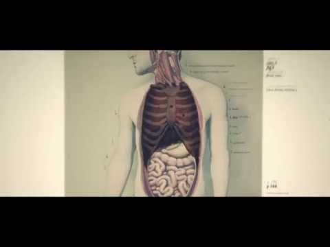 What You Can't See - Alcohol and Health Campaign - 2014 - 30sec